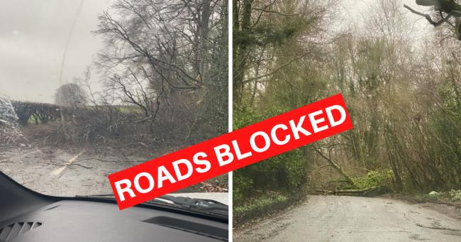 Roads blocked due to fallen trees in Overton and outer Basingstoke