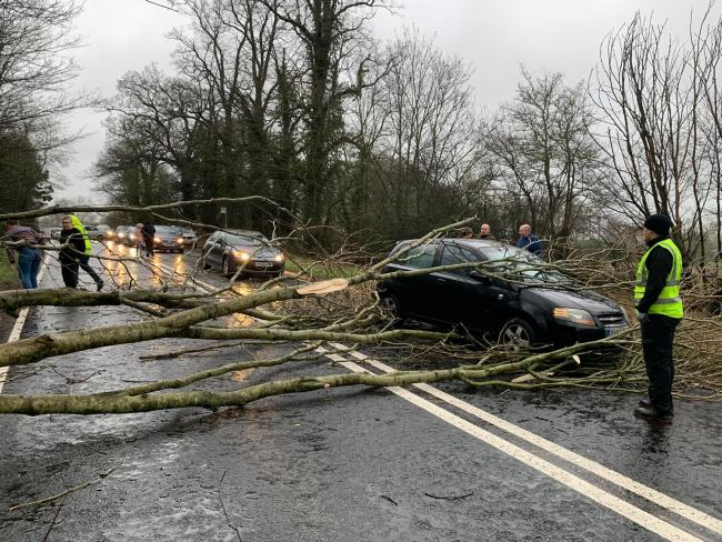 Driver's lucky escape after trees crash down on his car on the A33