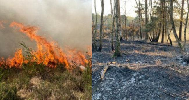 Credit: Tadley Fire Station - The Met Office has issued an AMBER wildfire warning this weekend