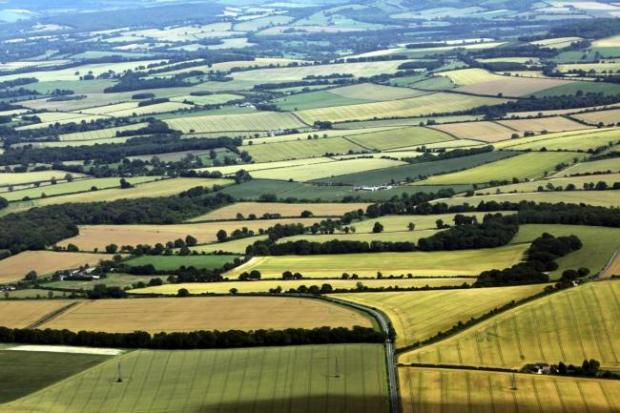 Basingstoke Gazette: The rolling Hampshire countryside