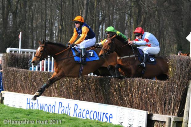 Hackwood Park ready for point-to-point meetings