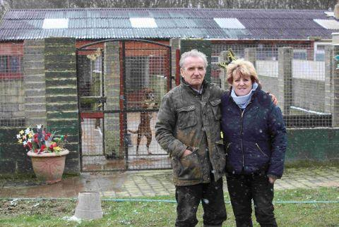 Mr and Mrs Halewood say they feel victimised by the city council