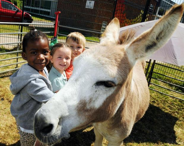 Basingstoke Gazette: Tillyrose Hemmings, Abigail Johnson and Caleb Isaacs with Angelina the donkey