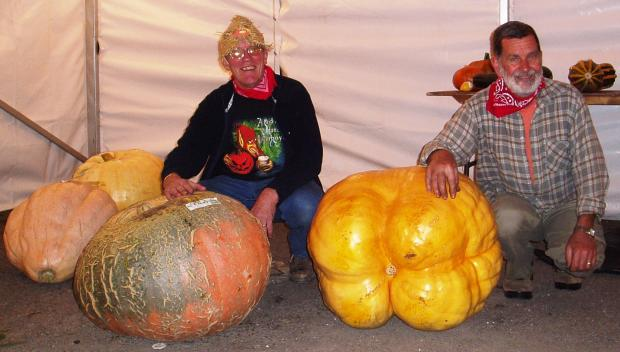 Big entry...competitors at the Bear and Ragged Staff pumpkin show