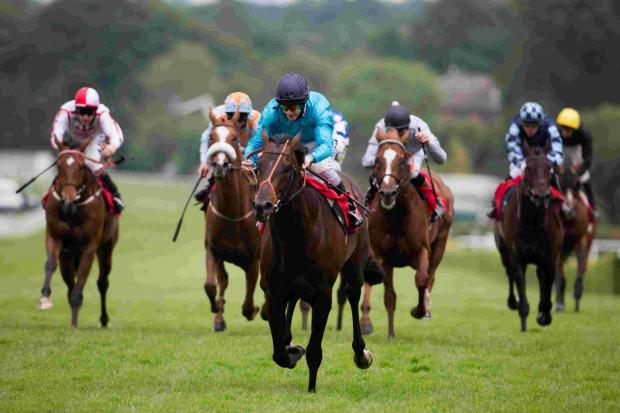 Black Panther, centre, wins the Cantor Fitzgerald Henry II Stakes, helping a lucky Basing