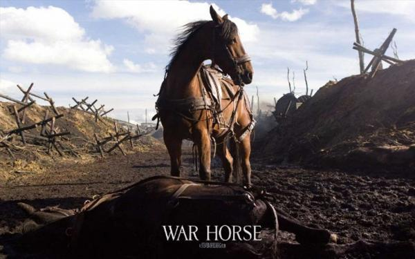 Find out more about the making of the film version of War Horse in BDC tomorrow
