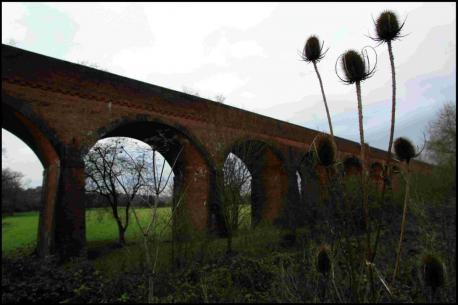 Campaign to reopen Winchester-Didcot railway using original route through Whitchurch