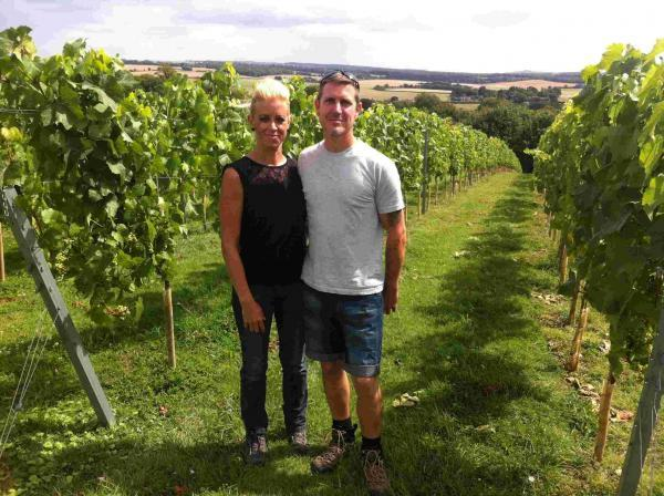 Donna and David Line harvested their first grapes in 2010