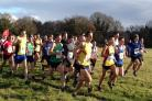 The runners get under way at Tadley Runners' Christmas Cross Country Race