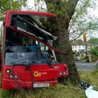 Basingstoke Gazette: A bus which crashed into a tree near Manor Park station in Newham, London