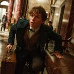 Basingstoke Gazette: Eddie Redmayne unveils new trailer for Fantastic Beasts And Where To Find Them