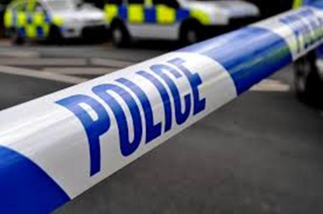 Police Appeal Following A Break In At Pets At Home In Hatch Warren Basingstoke Gazette