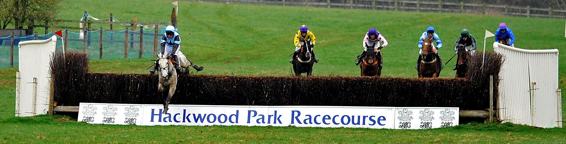Hackwood Park Point to Point