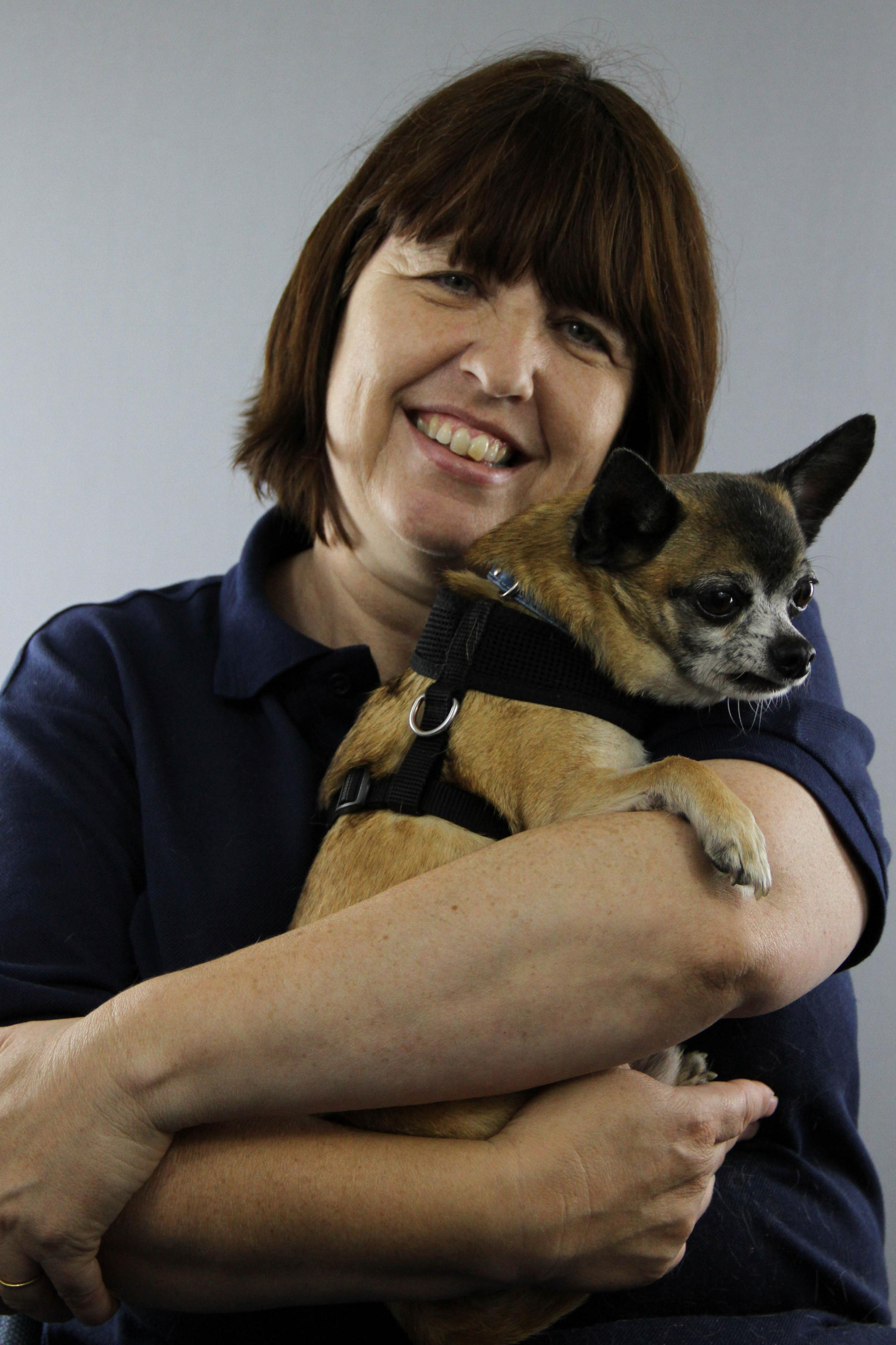 Laura Yeates' work with stray dogs has been recognised for the fourth year on the run