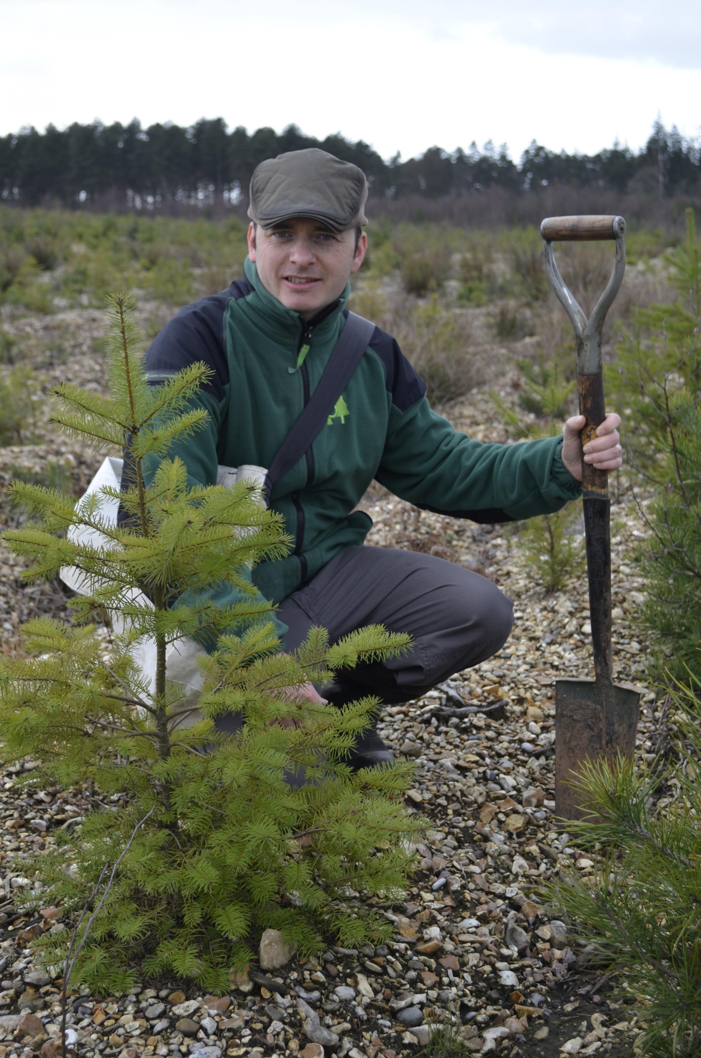 Tree-riffic! 80,000 trees to be planted across north Hampshire