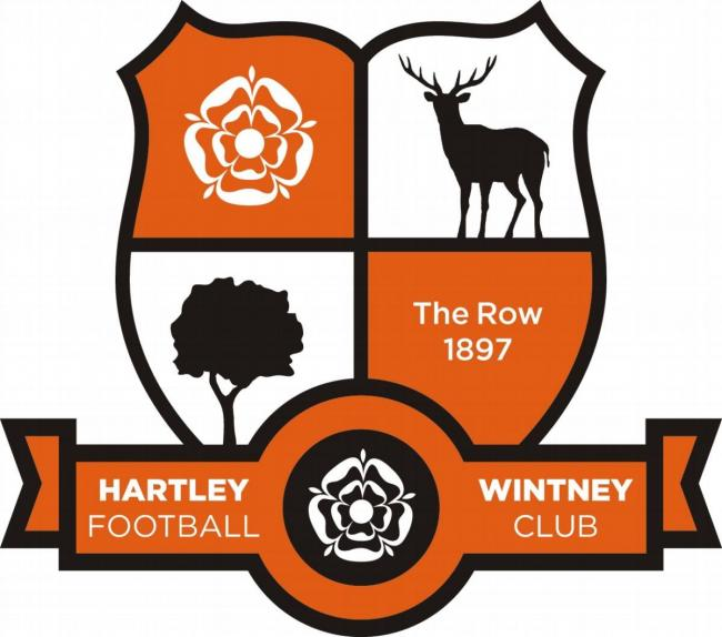 Hartley Wintney football